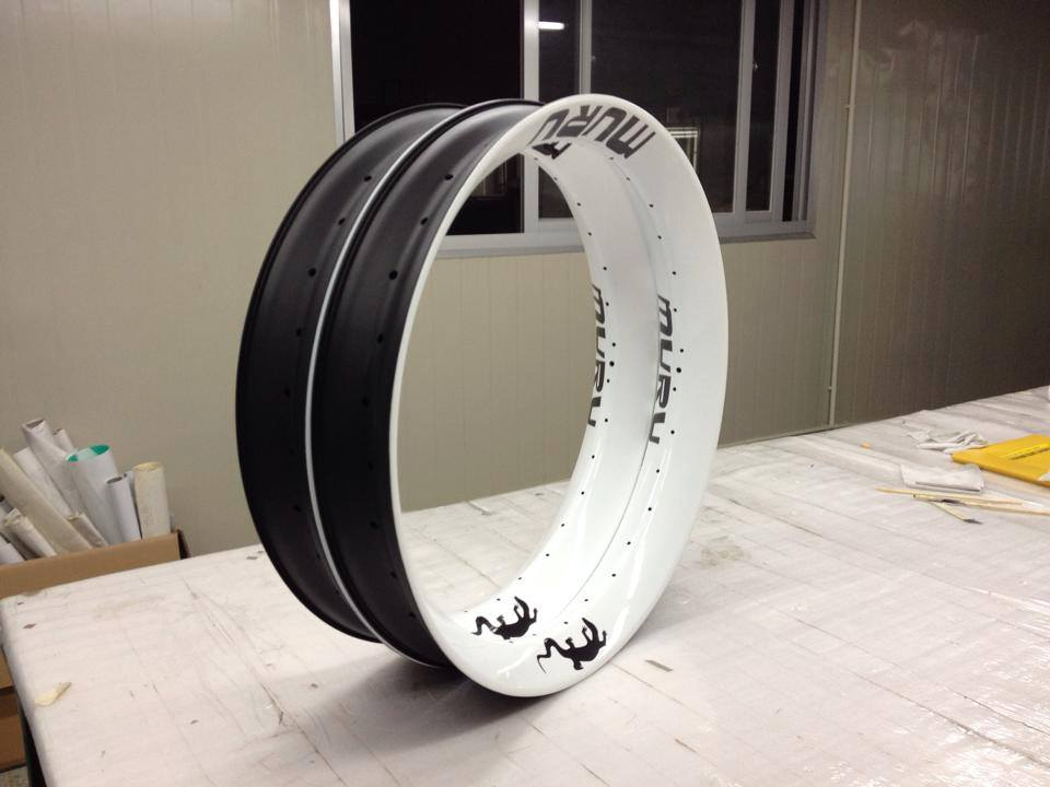 Nextie Bike Carbon Rims