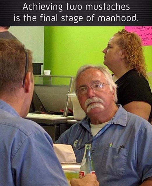 Funny picture or meme thread-mustache.png