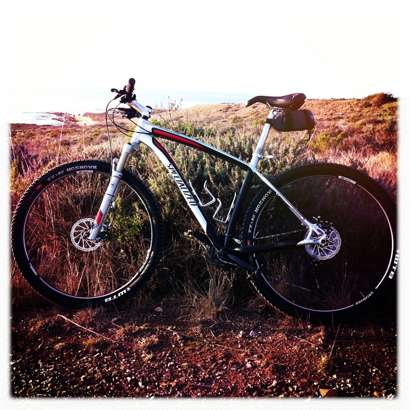 show us your stumpjumper HT-my-29er-web-800.jpg