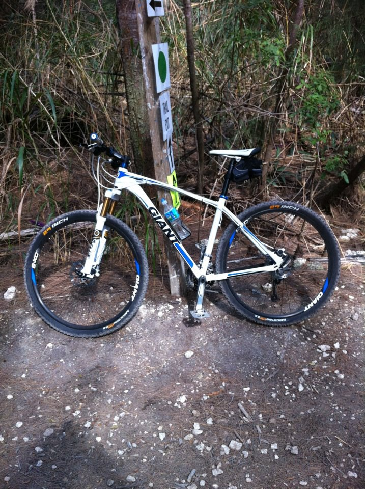 Can We Start a New Post Pictures of your 29er Thread?-my-giant-talon.jpg