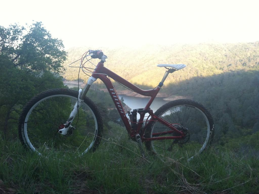 The unveiling - my new Niner Rip 9-my-niner.jpg
