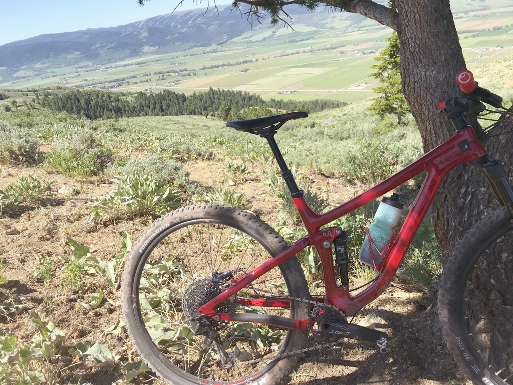Who Rides A Norco?-my-norco.jpg