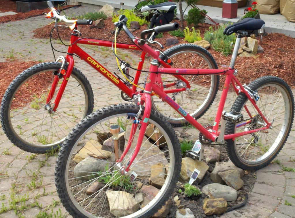 "Raleigh ""The Edge""-my_two_olsen_bikes_sm.jpg"