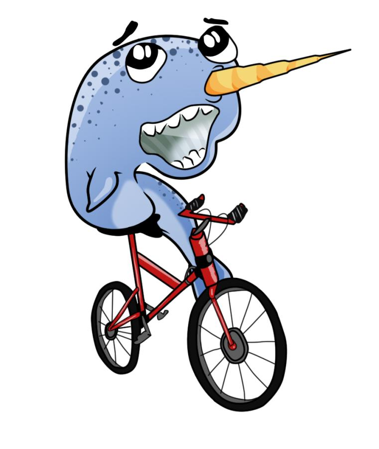 Chinese carbon: why I buy direct-narwhal-bike.jpg