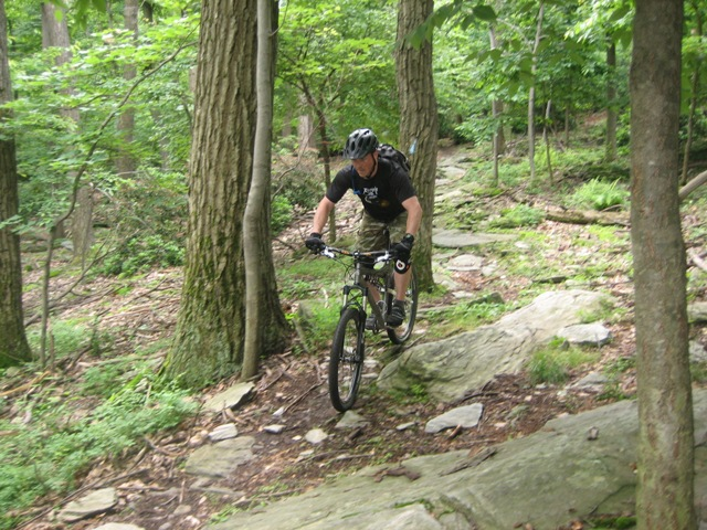 Baltimore in June-nate-trail.jpg