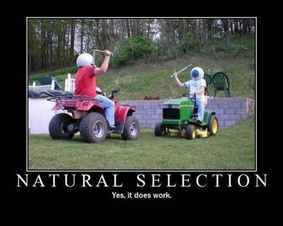 Name:  natural selection.jpg