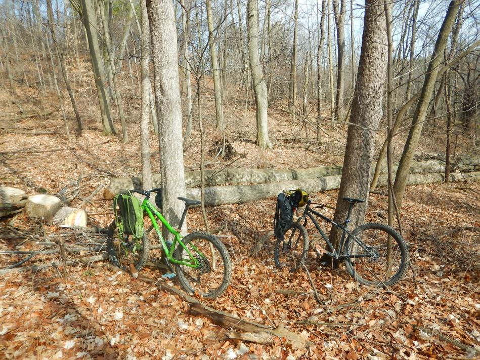 Local Trail Rides-ndb8yw6.jpg