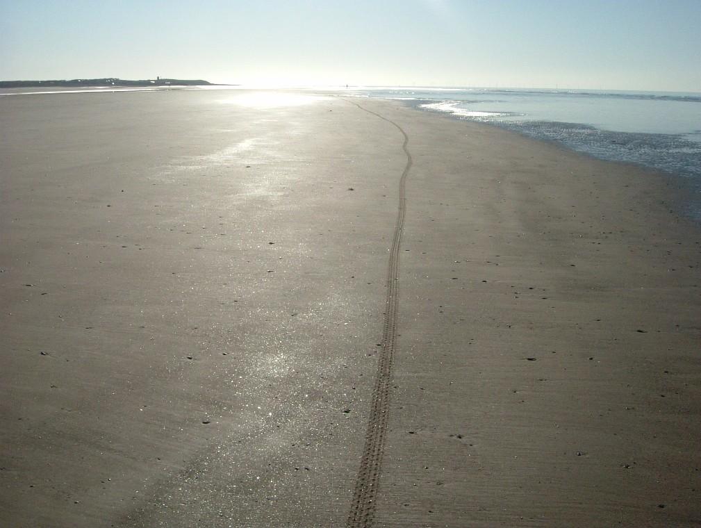 Beach/Sand riding picture thread.-ne4.jpg