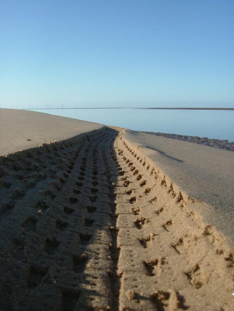 Beach/Sand riding picture thread.-ne8.jpg