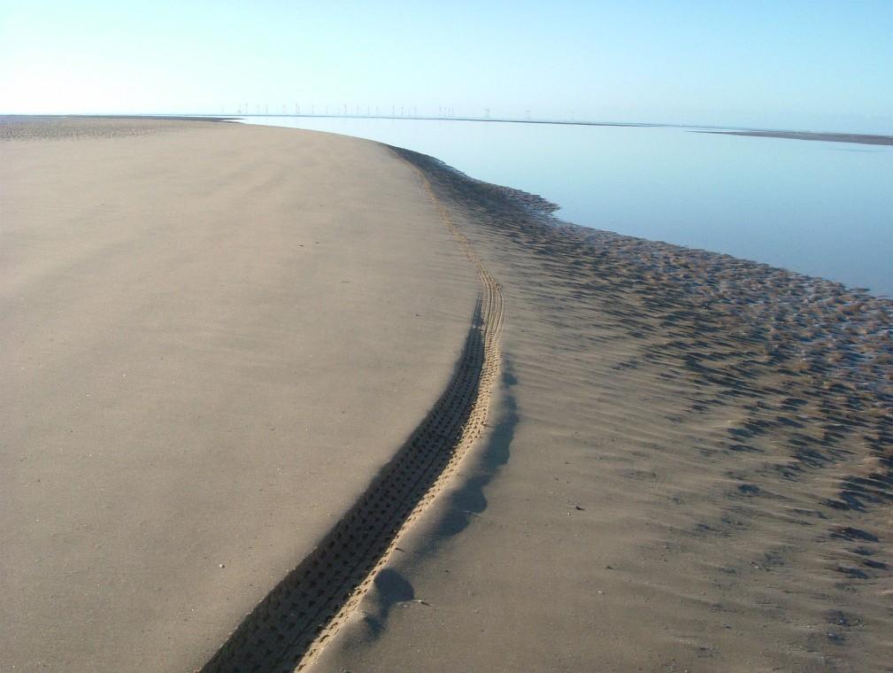 Beach/Sand riding picture thread.-ne9.jpg