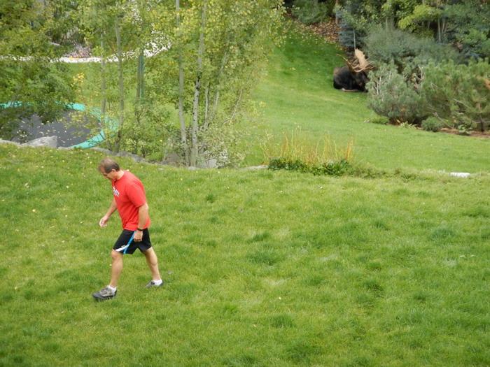 animal encounters-neighbor-walk-resize.jpg