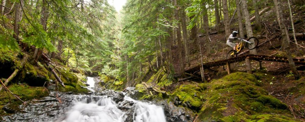 BC trail