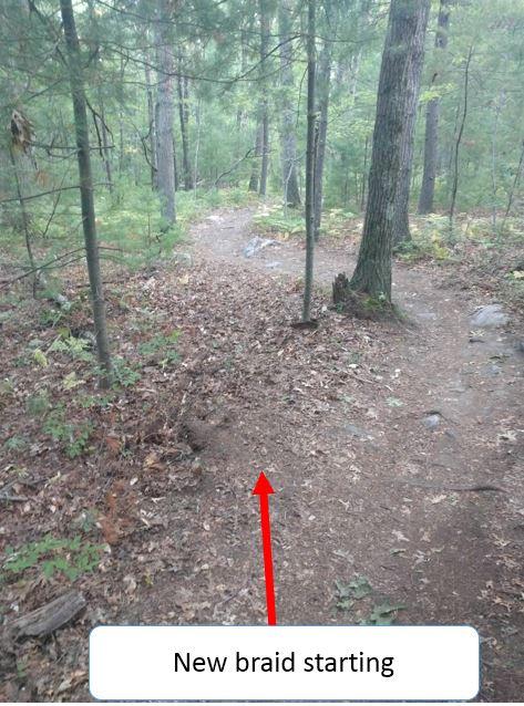 Who the Freak is homogenizing the LandLocked for craps sake-new-scout-trail-1.jpg