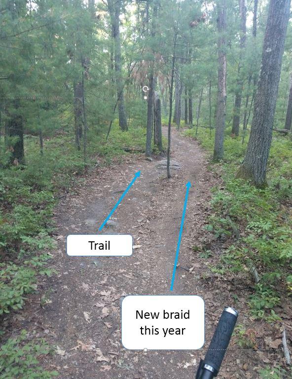 Who the Freak is homogenizing the LandLocked for craps sake-new-scout-trail-2.jpg