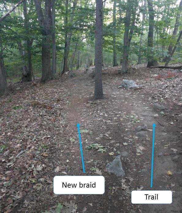 Who the Freak is homogenizing the LandLocked for craps sake-new-scout-trail-3.jpg