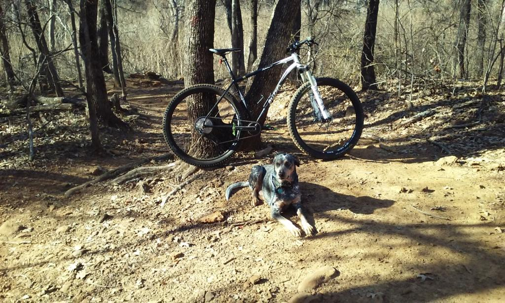 did you ride today?-new-years-ride-2018.jpg