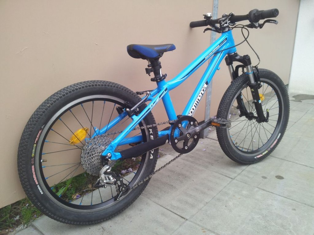 "Sub 20lb Commencal Ramones 20"" Project-new2.jpg"