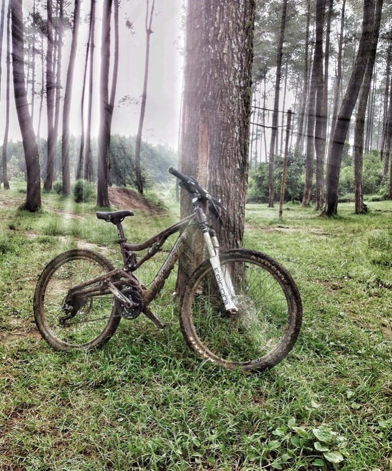Your Best MTB Pics with the iPhone-nickie-r.jpg