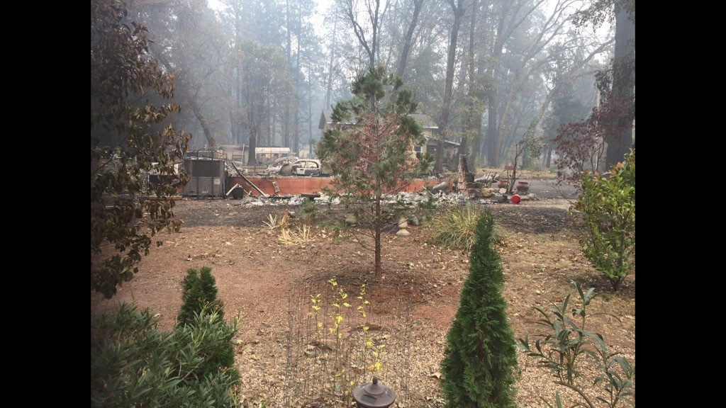 Town of Paradise being evacuated due to Camp Fire 🔥-nicks-house.jpg