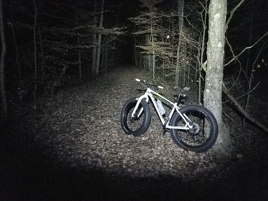Specialized Fatboy-night-pic.jpg