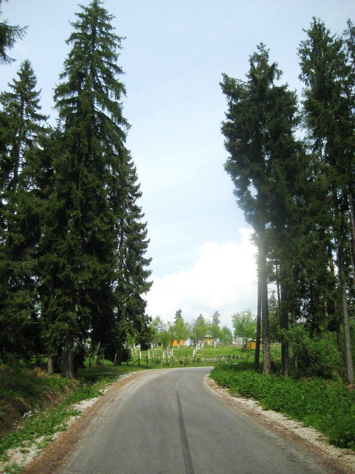 Bosnian beauty-nisici-kanjon-misoce-023.jpg
