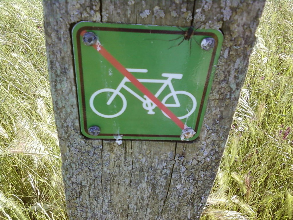 Annadel illegal trails in the news.-no-bikes.jpg