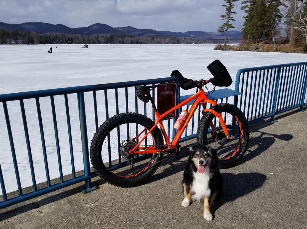 Daily fatbike pic thread-no-swimming.jpg