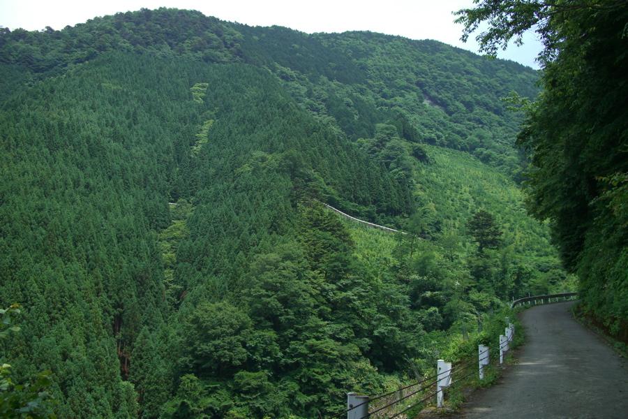 Nikko Mountain Biking-nokogiri-otake1.jpg