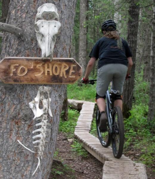 Norco Mtn Bike 4