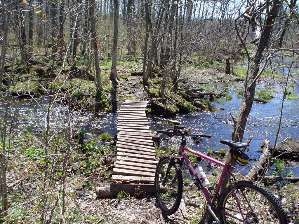 Bridges of Eastern Canada-northlogbridge1.jpg
