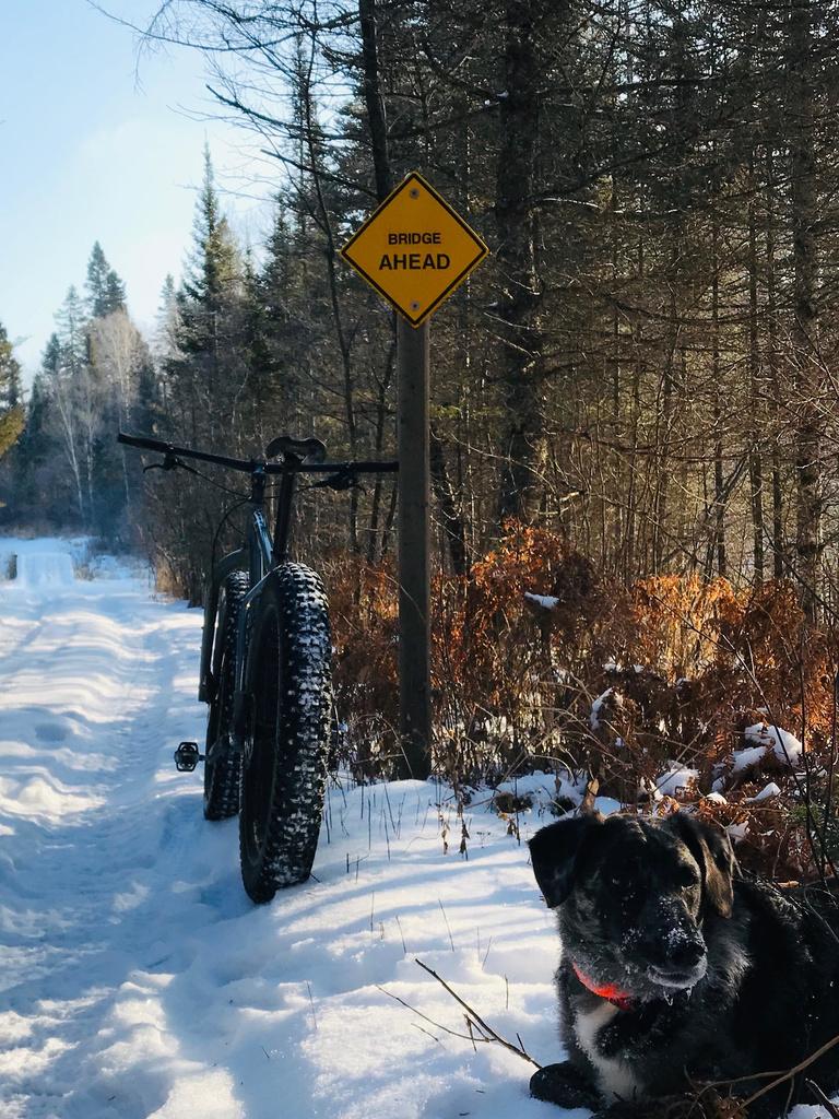 Daily fatbike pic thread-northwoods.jpg