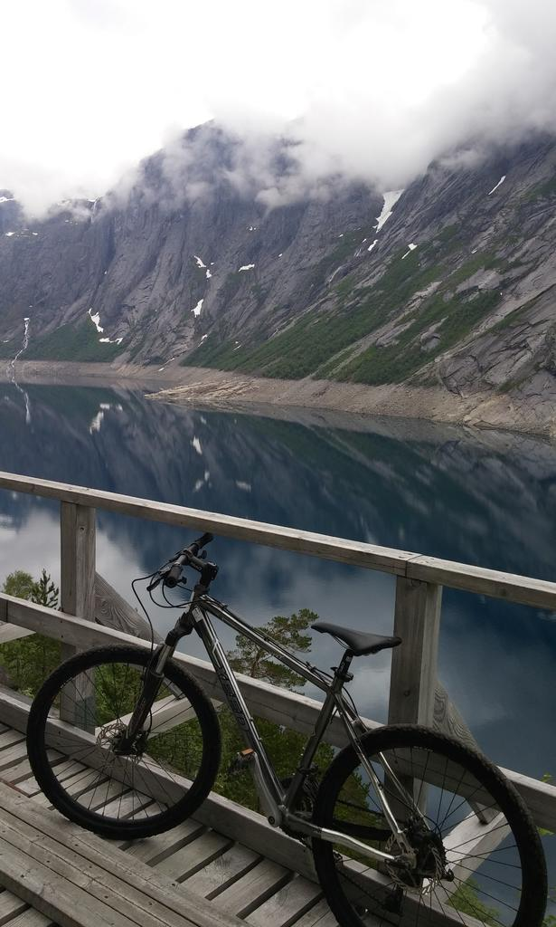 bike +  bridge pics-norway.jpg