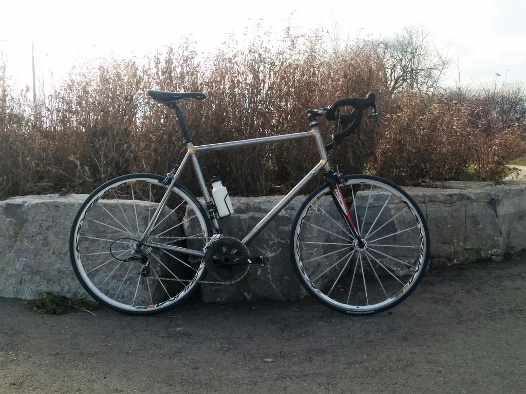 Ride bike, drink water...-november-24th-ride.jpg