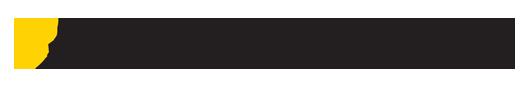 NP junior Logo 1