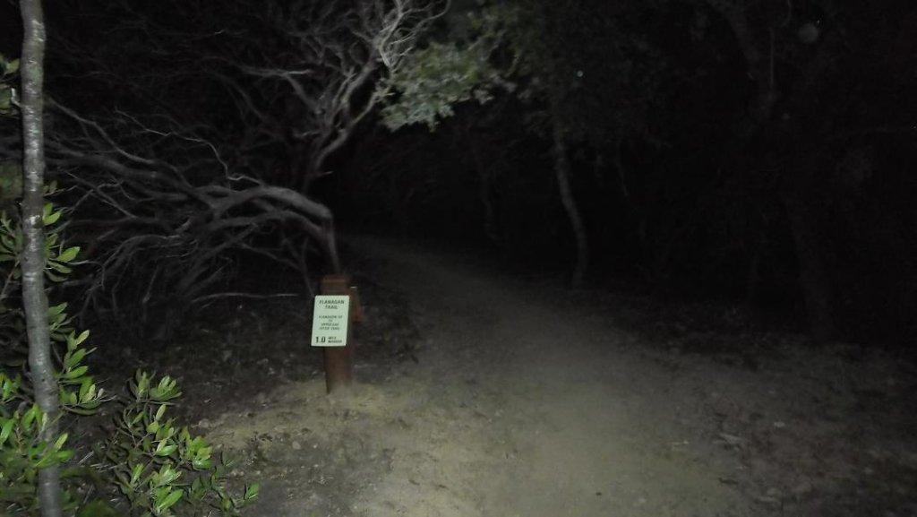 Post your night riding pics!-nr04.jpg