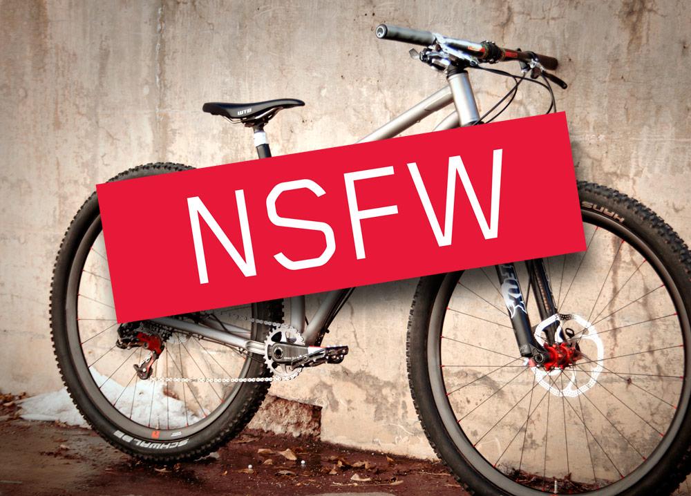 Name the New Niner Contest! The Winner!-nsfw.jpg