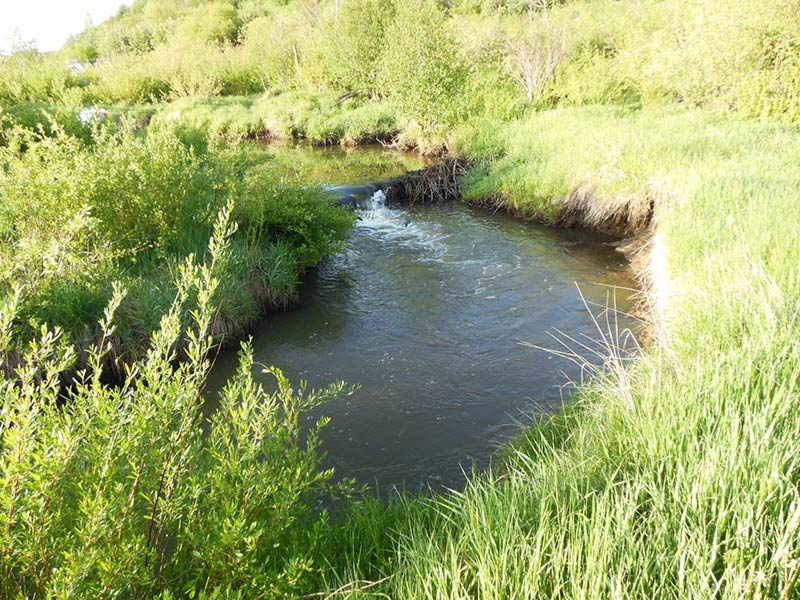 Trail Pics-oakcreek3.jpg