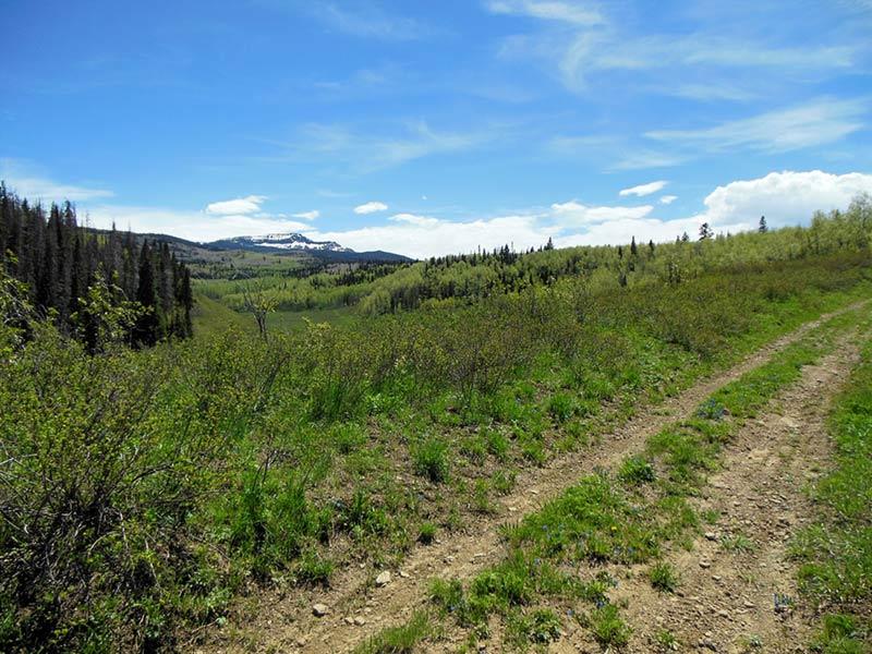Trail Pics-oakcrkrd2.jpg