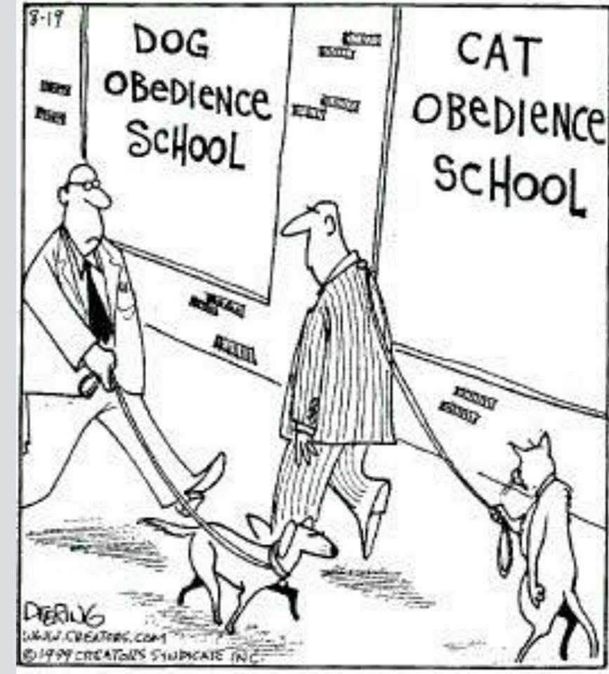 O.C. Official Daily Chuckle thread.... Comic Strip Enhanced...-obedience.jpg
