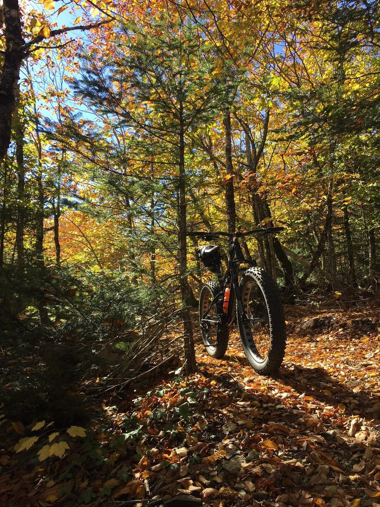 did you ride today?-oct-fundy18.jpg