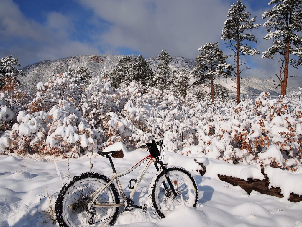 Daily fatbike pic thread-oct24snow2small.jpg