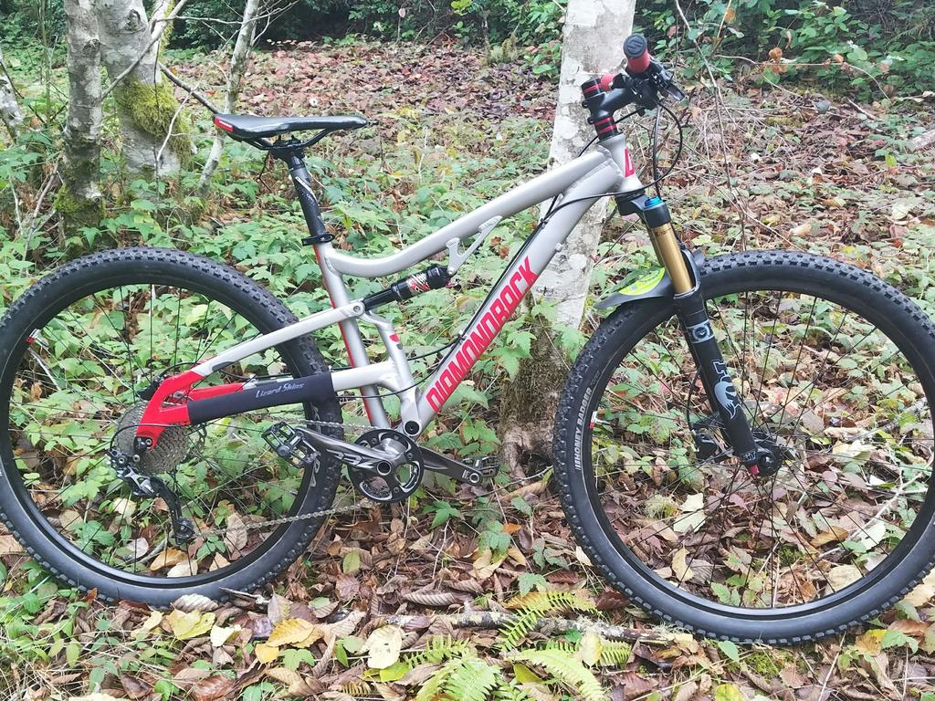 Post Pictures of your 29er-october-trail-pic.jpg