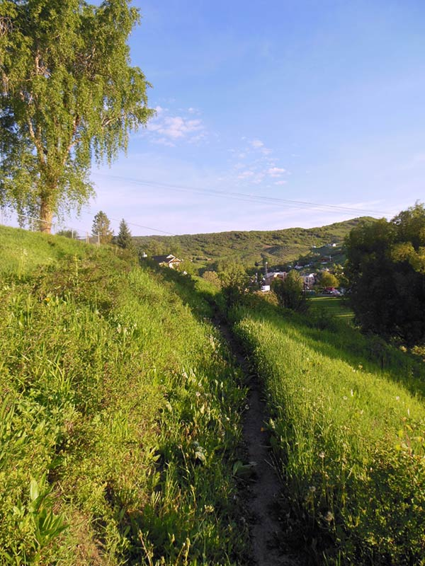 Trail Pics-octrail3.jpg