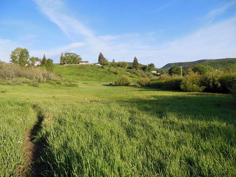 Trail Pics-octrail6.jpg