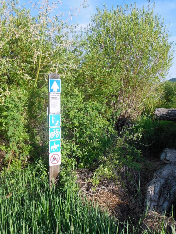 Trail Pics-octrail7.jpg