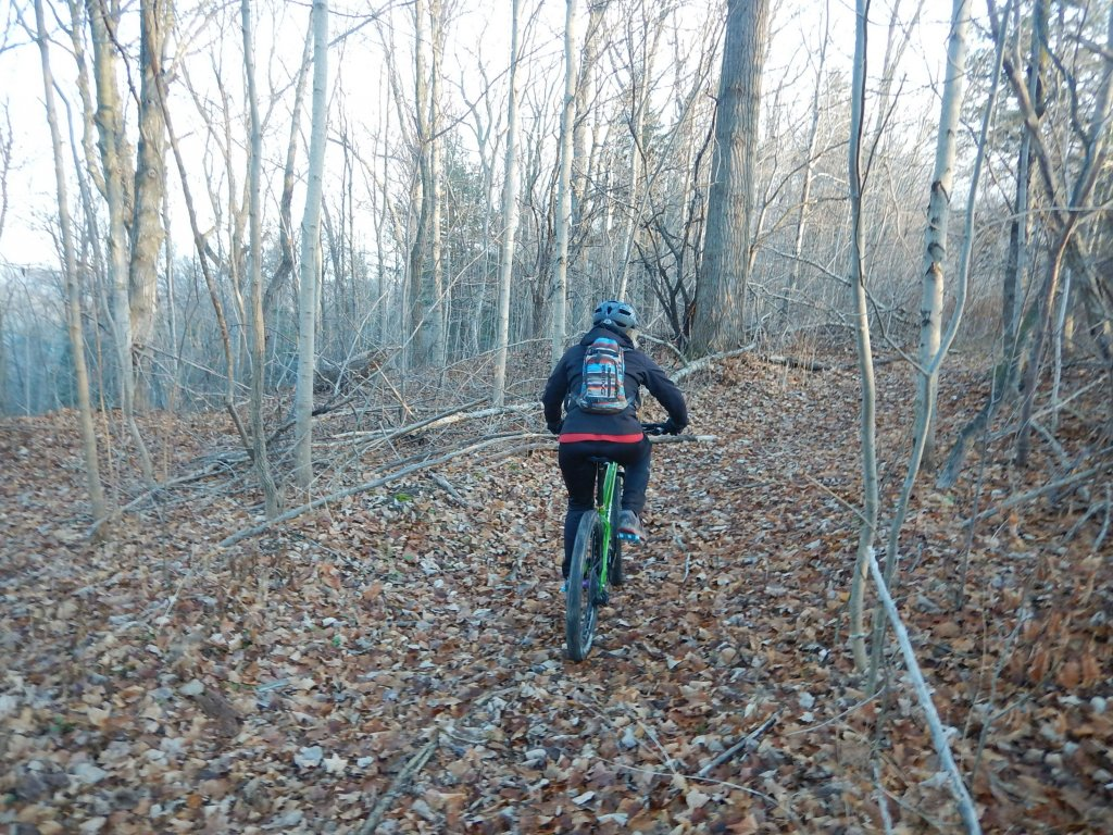 did you ride today?-oeaq1bc.jpg
