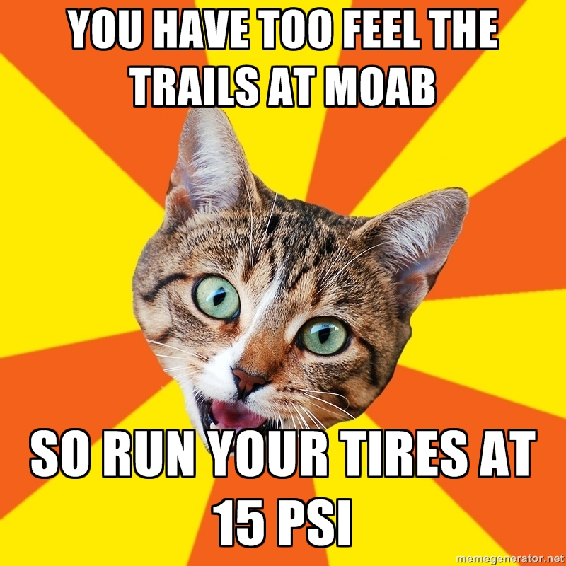 Bad MTB Advice Cat-ogexz.jpg