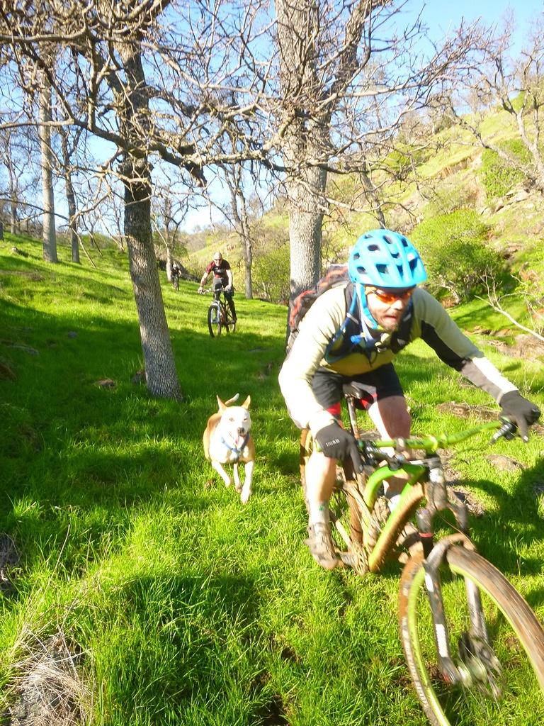 Skyline Classic Race is back!-ogre-riding-towards-cam.jpg