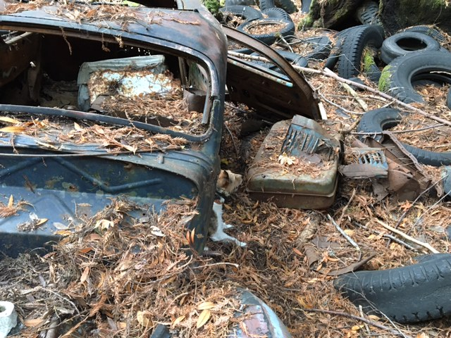 The Abandoned Vehicle Thread-old-ford_bo.jpg
