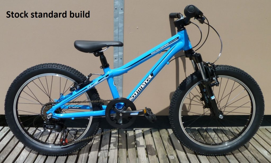 "Sub 20lb Commencal Ramones 20"" Project-old1.jpg"